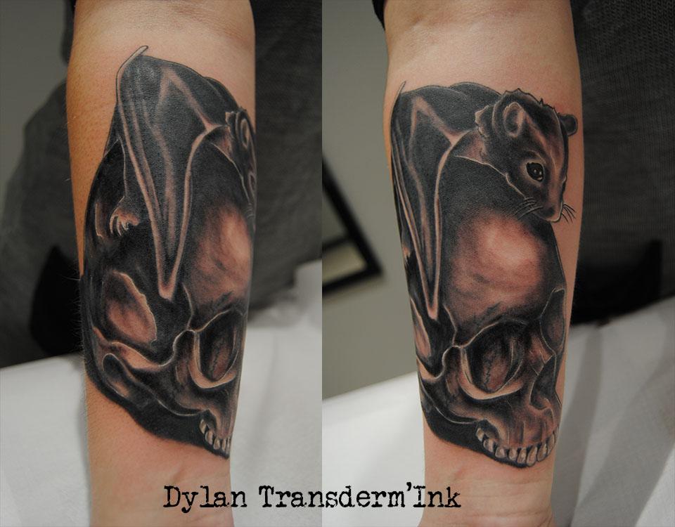 skull & bat