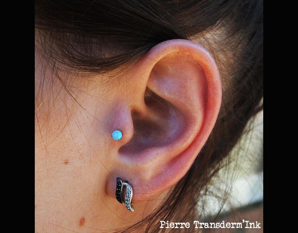 Tragus opale