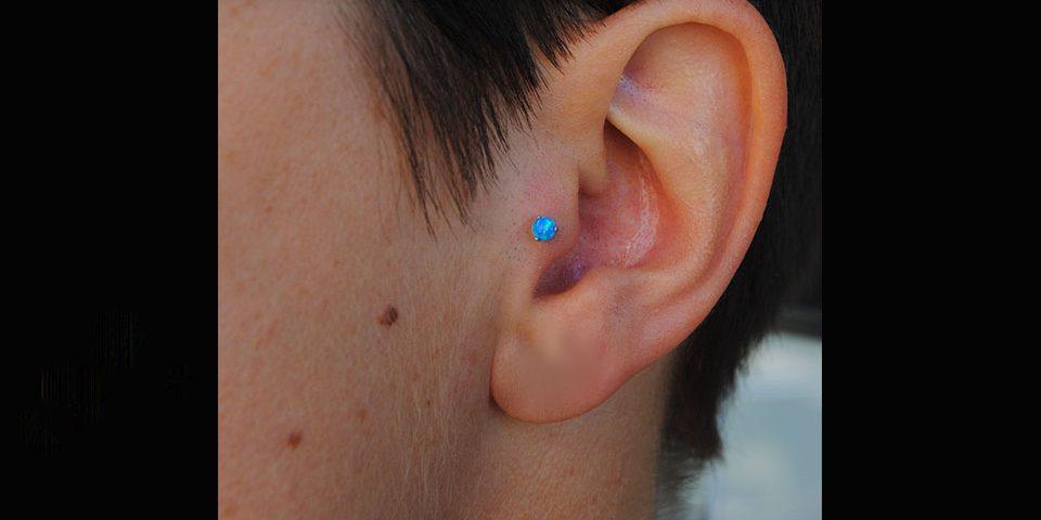 Tragus opale bleu