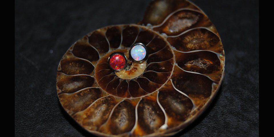 Cabochon Md/Médusa opale